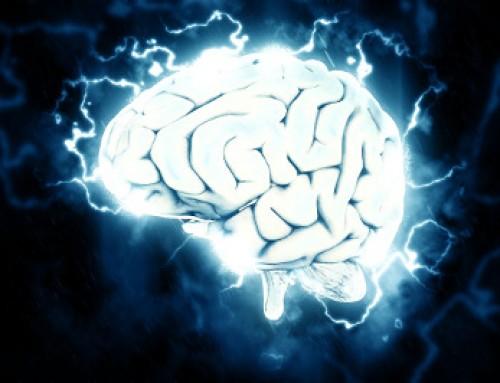 Dein Gehirn ist, was es isst (Arte-Dokumentation)