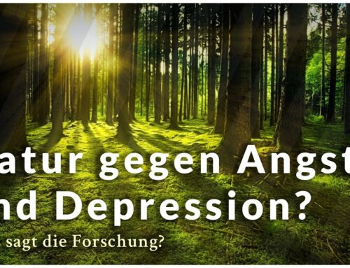 Neues Buch: Naturtherapie bei Angst und Depression